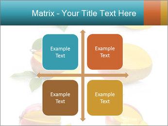 0000060834 PowerPoint Template - Slide 37