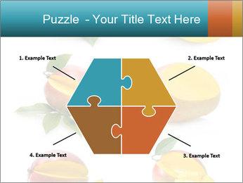 0000060834 PowerPoint Templates - Slide 40