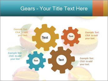 0000060834 PowerPoint Templates - Slide 47