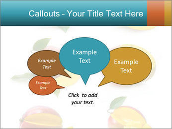 0000060834 PowerPoint Template - Slide 73
