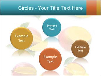 0000060834 PowerPoint Template - Slide 77