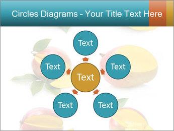 0000060834 PowerPoint Templates - Slide 78
