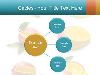 0000060834 PowerPoint Template - Slide 79