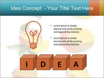 0000060834 PowerPoint Template - Slide 80