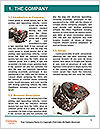 0000060840 Word Template - Page 3