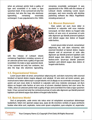 0000060840 Word Template - Page 4