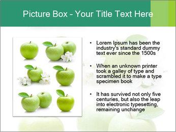 0000060843 PowerPoint Template - Slide 13