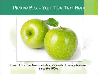 0000060843 PowerPoint Templates - Slide 15