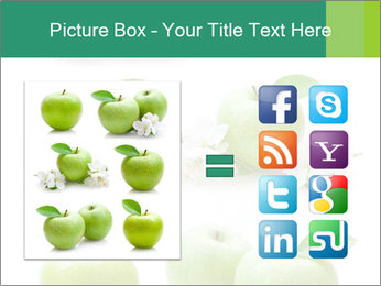 0000060843 PowerPoint Template - Slide 21