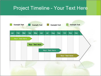 0000060843 PowerPoint Template - Slide 25