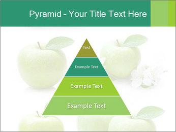 0000060843 PowerPoint Templates - Slide 30