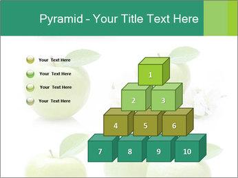 0000060843 PowerPoint Template - Slide 31
