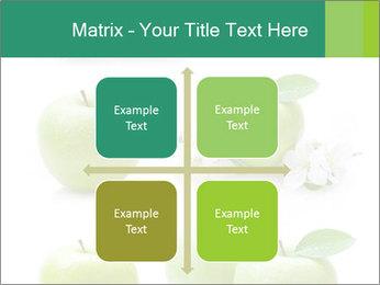 0000060843 PowerPoint Template - Slide 37