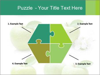0000060843 PowerPoint Template - Slide 40