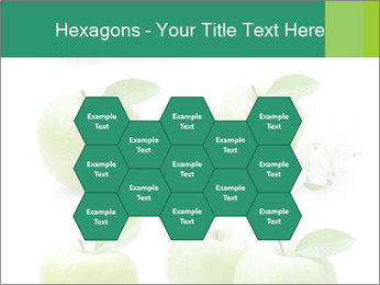 0000060843 PowerPoint Templates - Slide 44