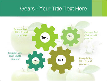0000060843 PowerPoint Templates - Slide 47