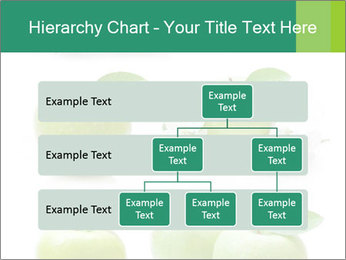 0000060843 PowerPoint Template - Slide 67