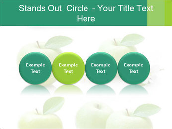 0000060843 PowerPoint Templates - Slide 76