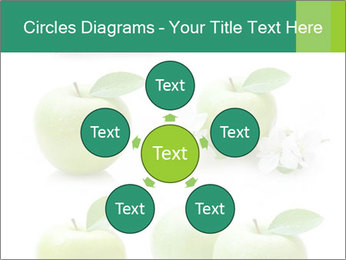 0000060843 PowerPoint Template - Slide 78