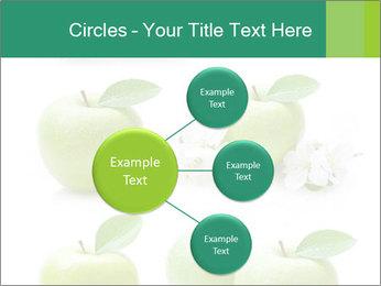 0000060843 PowerPoint Template - Slide 79
