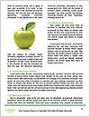 0000060843 Word Template - Page 4