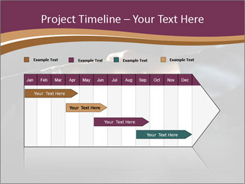 0000060847 PowerPoint Templates - Slide 25