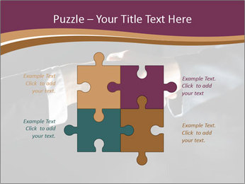 0000060847 PowerPoint Templates - Slide 43