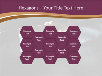 0000060847 PowerPoint Templates - Slide 44