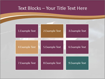 0000060847 PowerPoint Templates - Slide 68