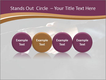 0000060847 PowerPoint Templates - Slide 76