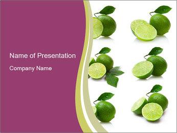 0000060878 PowerPoint Template - Slide 1