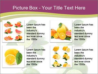 0000060878 PowerPoint Template - Slide 14
