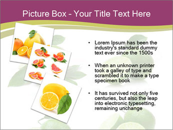 0000060878 PowerPoint Template - Slide 17