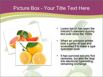 0000060878 PowerPoint Template - Slide 20