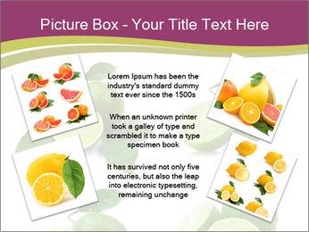 0000060878 PowerPoint Template - Slide 24