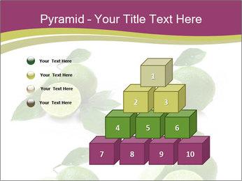 0000060878 PowerPoint Template - Slide 31