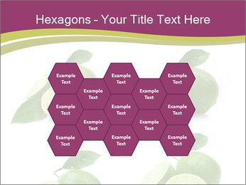 0000060878 PowerPoint Template - Slide 44