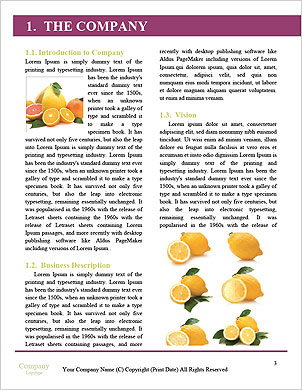 0000060878 Word Template - Page 3