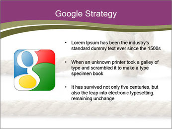 0000060897 PowerPoint Template - Slide 10