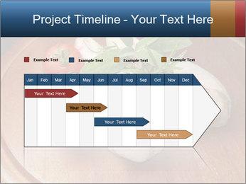 0000060899 PowerPoint Template - Slide 25