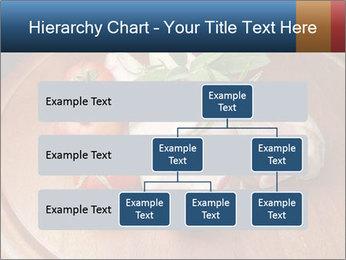 0000060899 PowerPoint Template - Slide 67