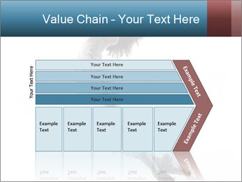 0000060907 PowerPoint Templates - Slide 27