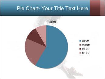 0000060907 PowerPoint Templates - Slide 36