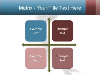 0000060907 PowerPoint Templates - Slide 37