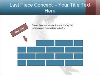 0000060907 PowerPoint Templates - Slide 46