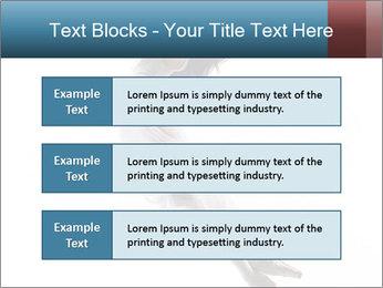 0000060907 PowerPoint Templates - Slide 58