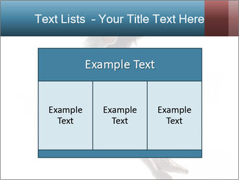 0000060907 PowerPoint Templates - Slide 59