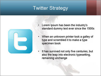 0000060907 PowerPoint Templates - Slide 9