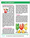 0000060921 Word Template - Page 3