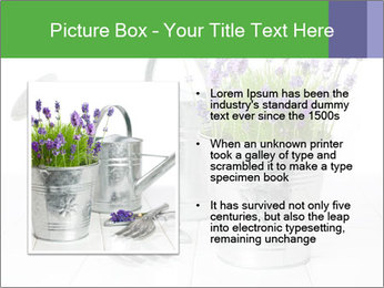 0000060923 PowerPoint Templates - Slide 13